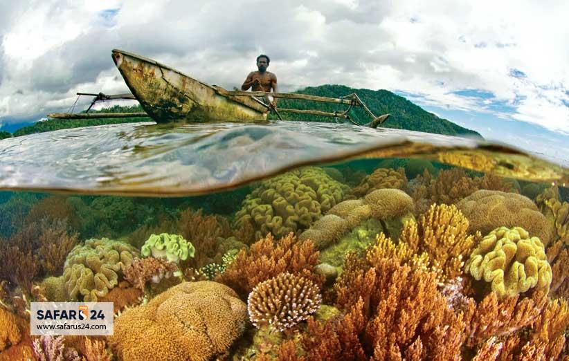 بلیط برای اندونزی